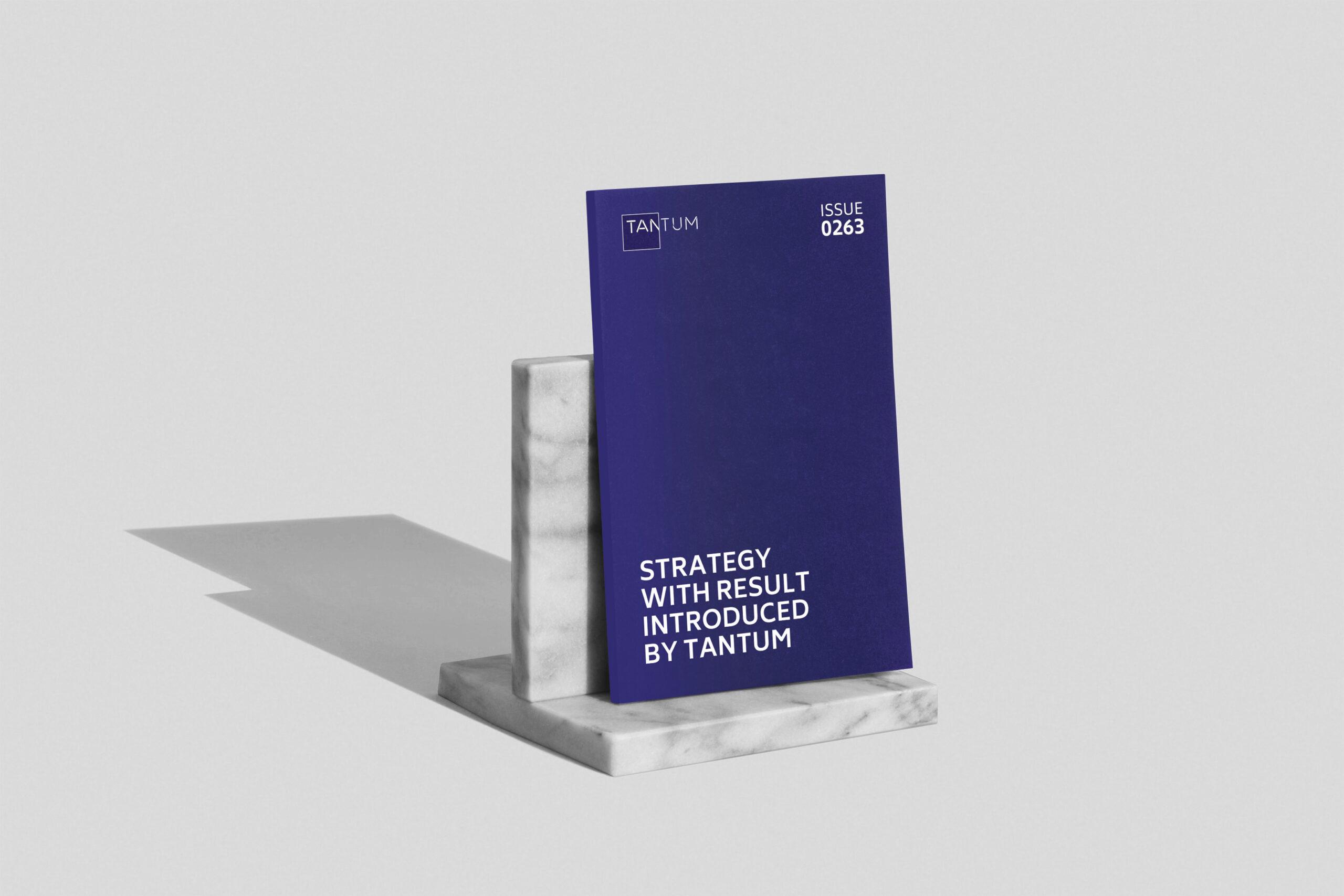 دليل إستراتيجية العلامة التجارية